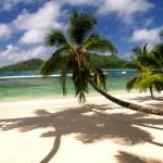Viaggi organizzati per le Seychelles