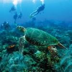 Barbados: non solo sport acquatici